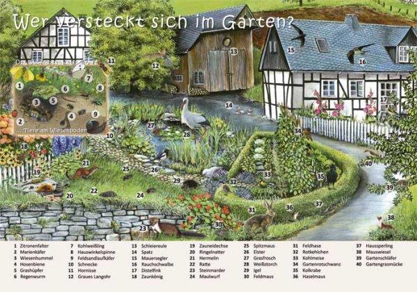 Wer versteckt sich im Garten?