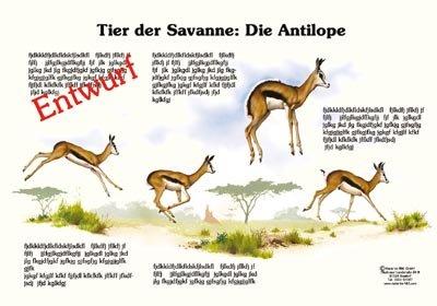 Tier der Savanne: Die Antilope