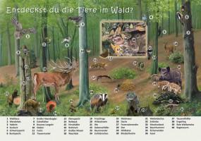 Entdeckst du die Tiere im Wald?