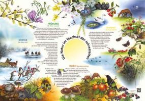 Die Natur im Wechsel der Jahreszeiten