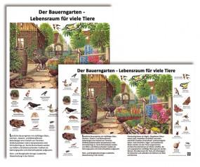Der Bauerngarten - Lebensraum für viele Tiere