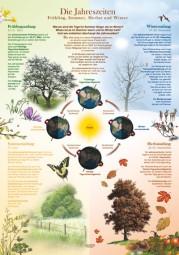 Die Jahreszeiten - Frühling, Sommer, Herbst und Winter