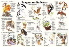 Fragen an die Natur