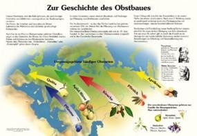 Zur Geschichte des Obstbaues