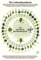 Der Lebensbaumkreis