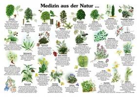 Medizin aus der Natur