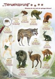 Tierweitsprung