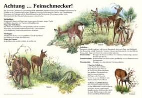 Achtung Feinschmecker!