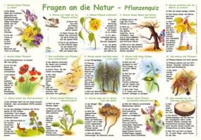 Fragen an die Natur - Pflanzenquiz