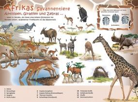 Afrikas Savannentiere