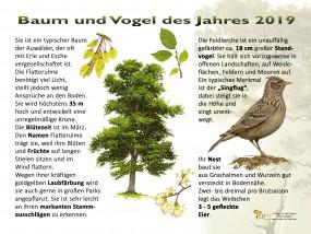 Baum und Vogel des Jahres 2019