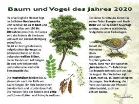 Baum und Vogel des Jahres 2020