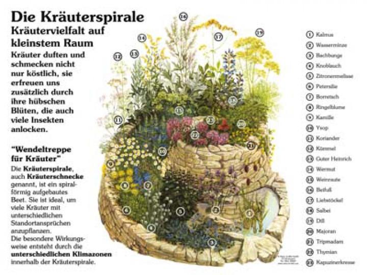 Herb Garden Plans Layout