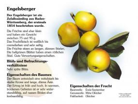 Engelsberger