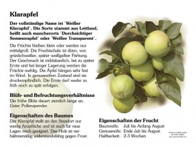 Klarapfel