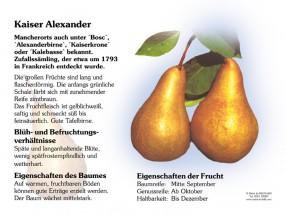 Kaiser Alexander