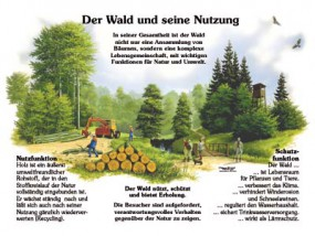 Der Wald und seine Nutzung