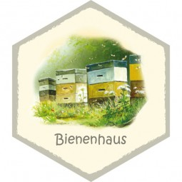 Wabe Bienenstock/haus