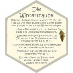 Wabe Wintertraube