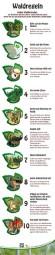 Waldregeln