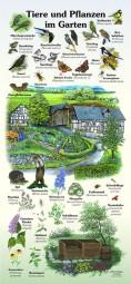 Tiere und Pflanzen im Garten