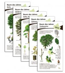 30 Bäume des Jahres von 1989-2018 - Paket