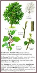 Faulbaum, Pulverholz