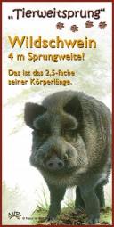 Tierweitsprung Wildschwein