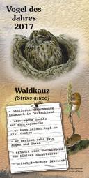 2017 Waldkauz