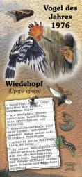1976 Wiedehopf