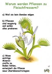 Warum werden Pflanzen zu Fleischfressern?