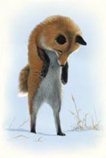 Fuchs Im Winter Postkarten Naturbucher Und Mehr Natur Im Bild