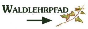 Waldlehrpfad-Efeu