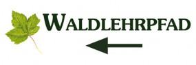 Waldlehrpfad-Ahorn