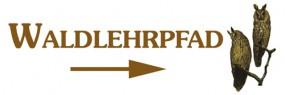 Waldlehrpfad-Eule