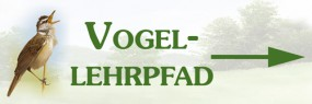 Vogellehrpfad