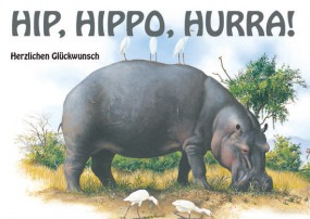 Geburtstagskarte Hippo