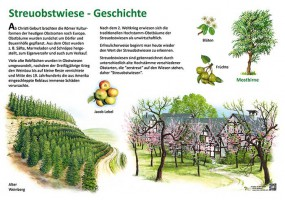 Streuobstwiese - Geschichte