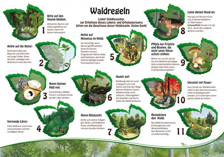 Waldregeln 50x70 Amp 70x100 Cm Wald Lehrtafeln Natur