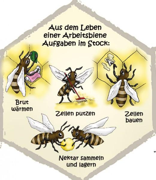 view Politische Kommunikation in Deutschland: