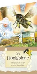 Faltblatt Honigbiene