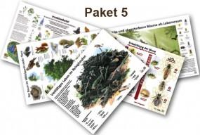 Posterpaket 5