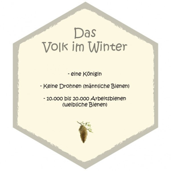 wabe volk im winter 26 x 30 cm bienenwabentafeln insekten ameisen und spinnen. Black Bedroom Furniture Sets. Home Design Ideas